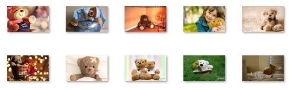 Teddy Bear Windows 8 Theme